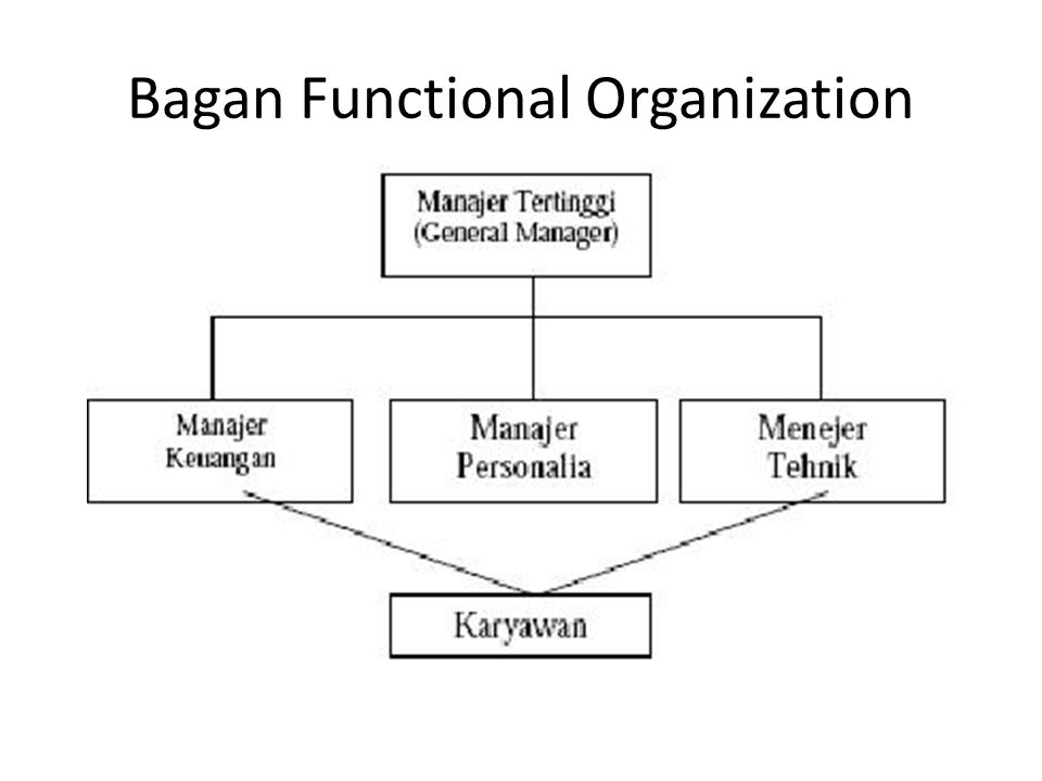 Bagan Functional Organization
