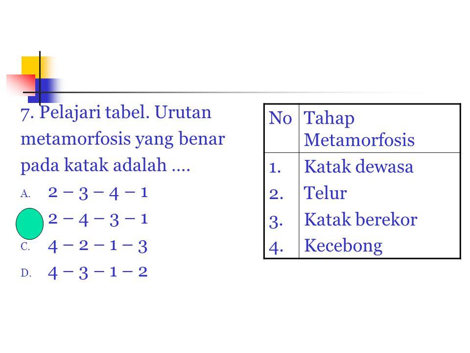 7. Pelajari tabel. Urutan metamorfosis yang benar. pada katak adalah …. 2 – 3 – 4 – 1. 2 – 4 – 3 – 1.