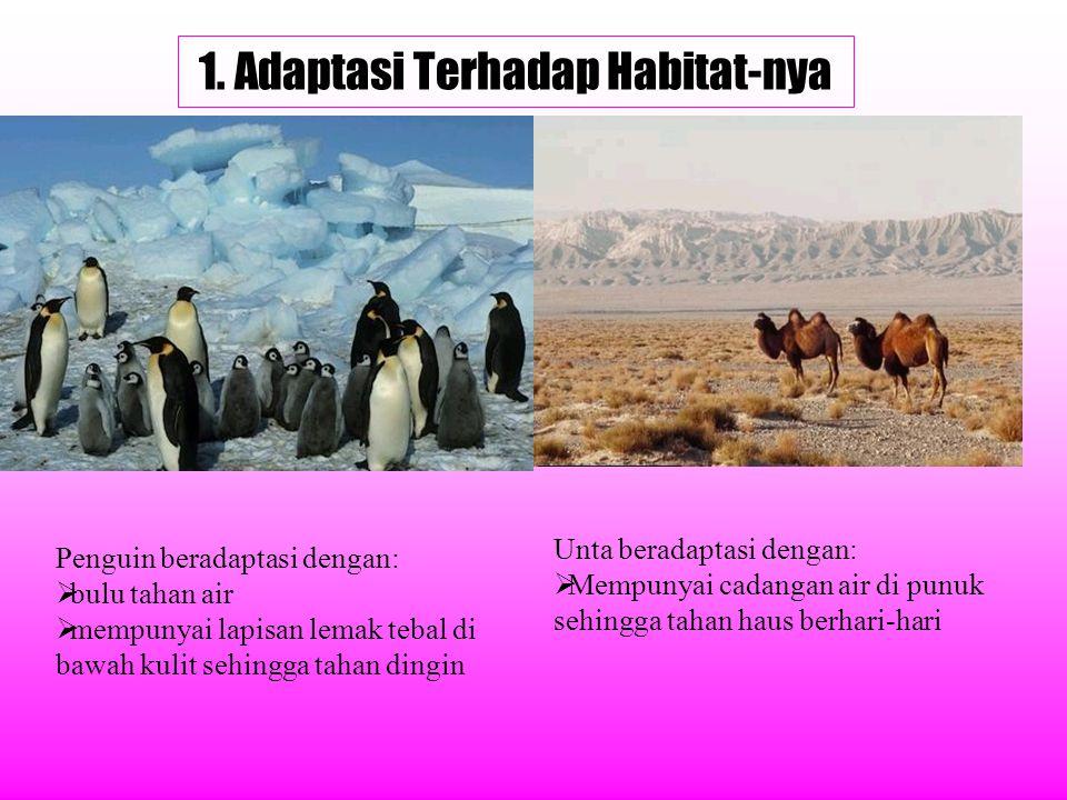 1. Adaptasi Terhadap Habitat-nya