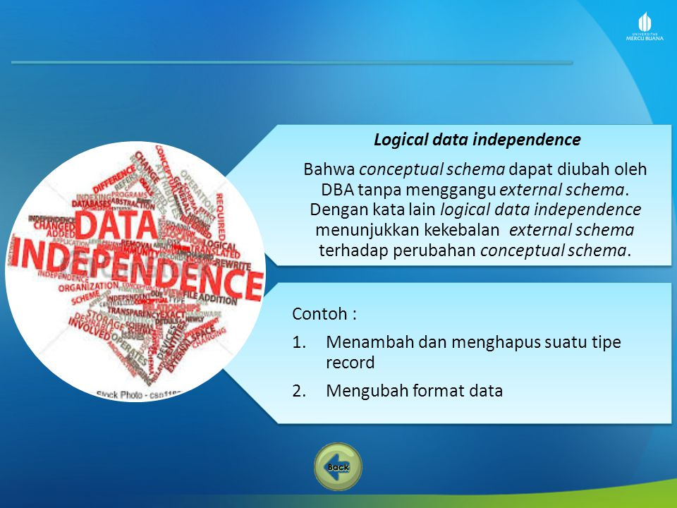 Logical data independence