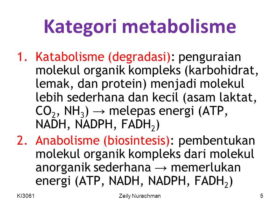 Kategori metabolisme