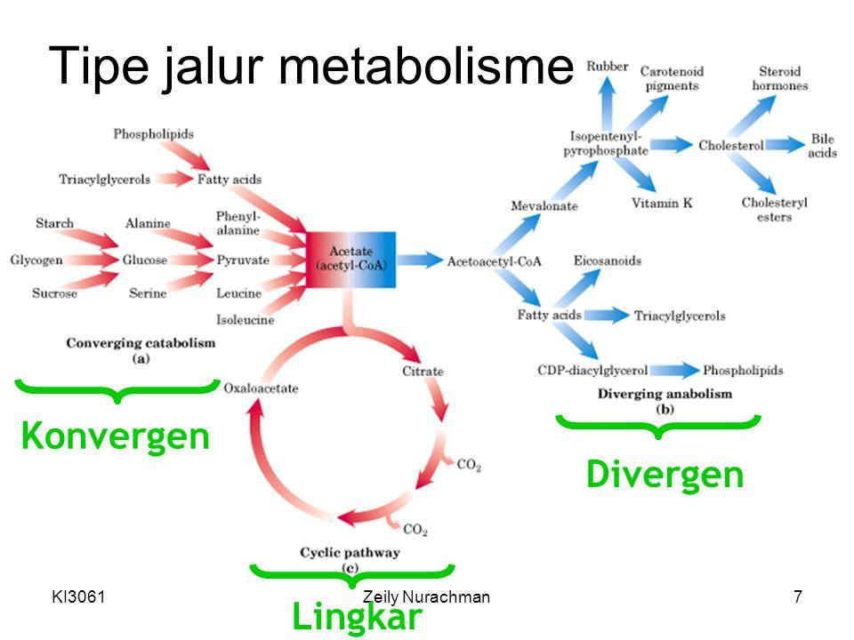 Tipe jalur metabolisme