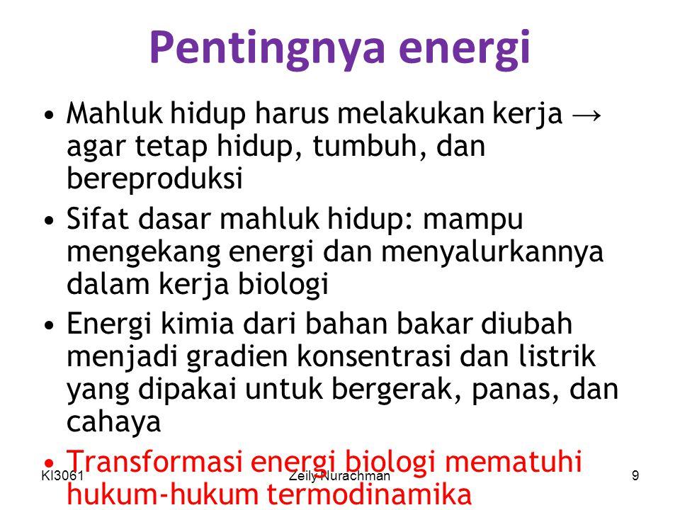 Pentingnya energi Mahluk hidup harus melakukan kerja → agar tetap hidup, tumbuh, dan bereproduksi.