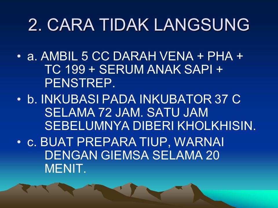 2. CARA TIDAK LANGSUNG a. AMBIL 5 CC DARAH VENA + PHA + TC 199 + SERUM ANAK SAPI + PENSTREP.
