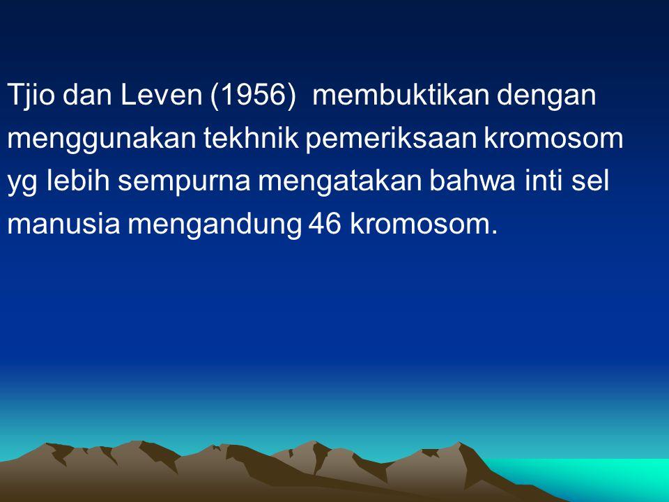 Tjio dan Leven (1956) membuktikan dengan