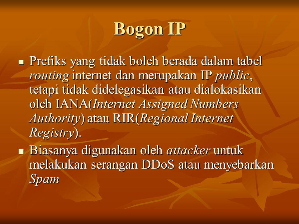 Bogon IP