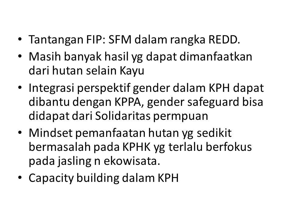Tantangan FIP: SFM dalam rangka REDD.