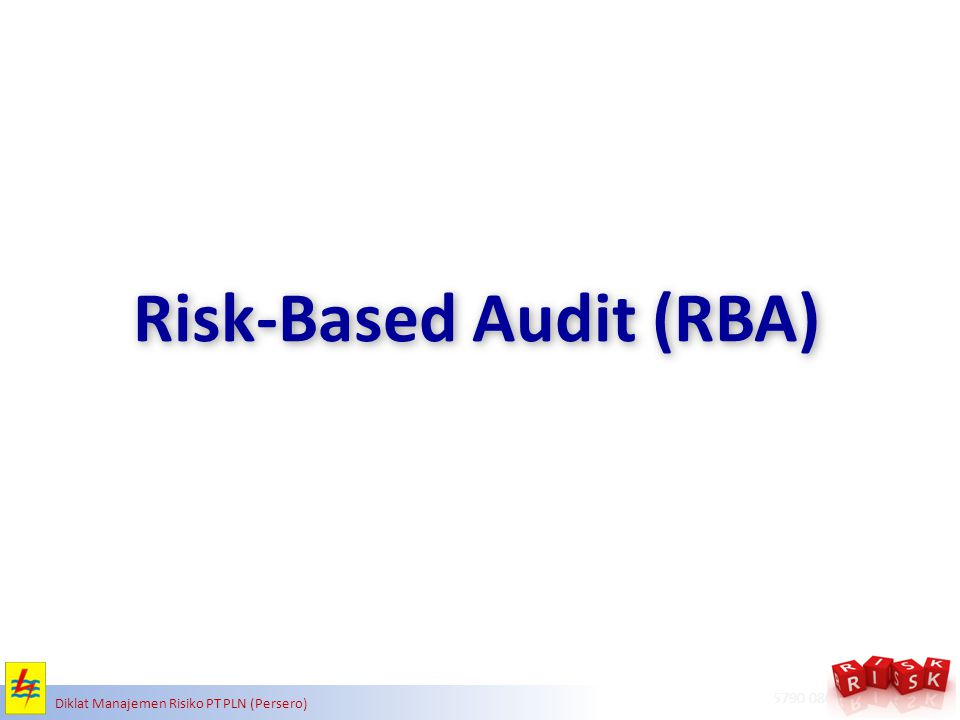 Risk-Based Audit (RBA)
