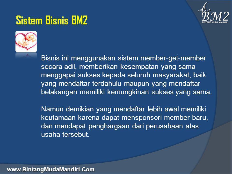 Sistem Bisnis BM2