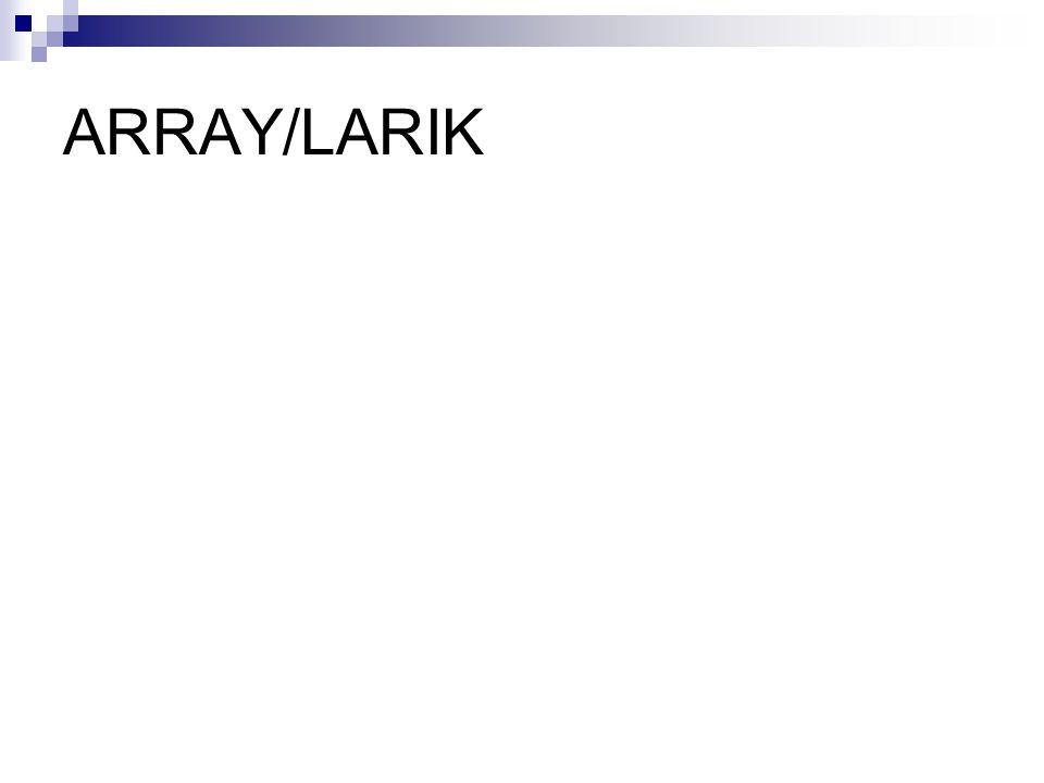ARRAY/LARIK