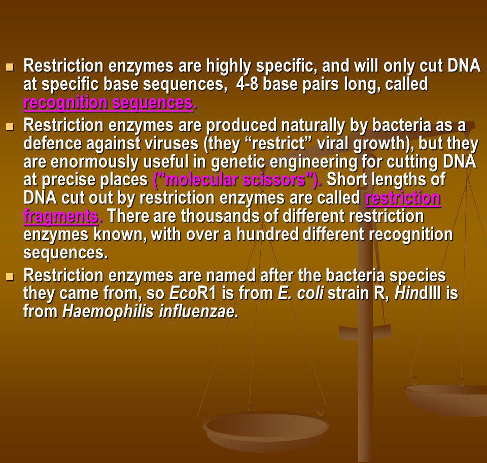 Restriction enzymes are highly specific, and will only cut DNA at specific base sequences, 4-8 base pairs long, called recognition sequences.