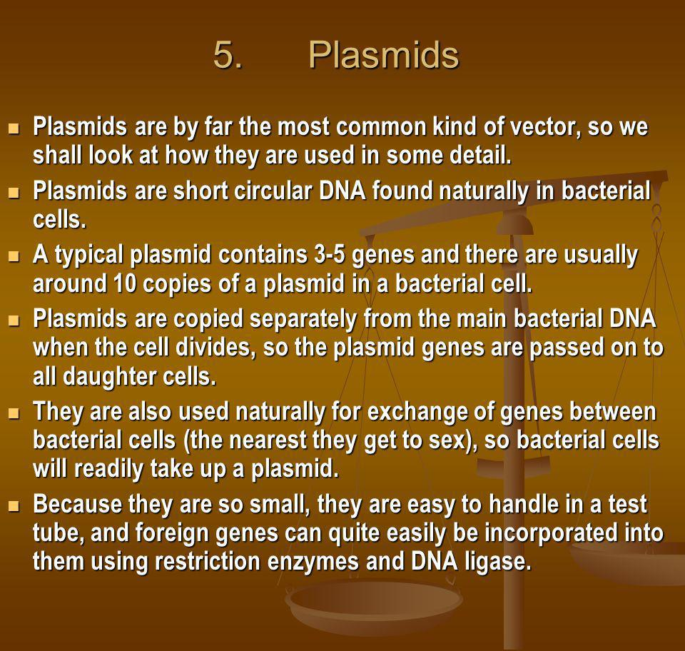 5. Plasmids Plasmids are by far the most common kind of vector, so we shall look at how they are used in some detail.
