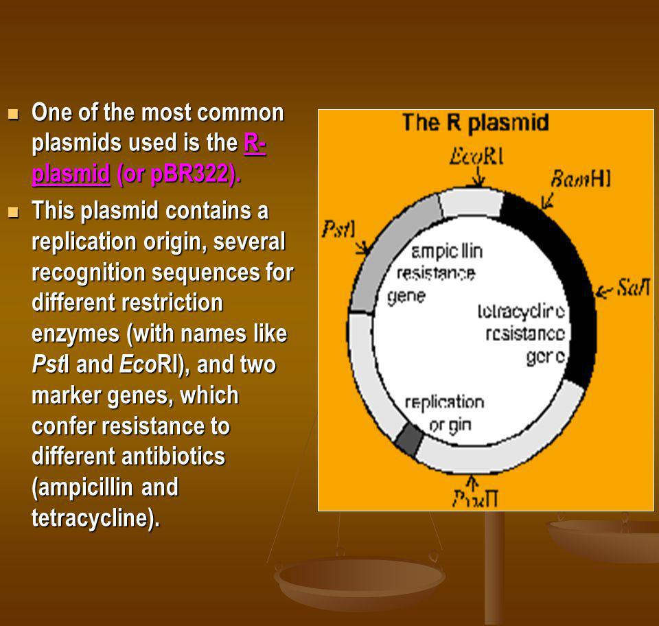 One of the most common plasmids used is the R-plasmid (or pBR322).