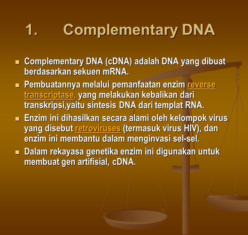 1. Complementary DNA Complementary DNA (cDNA) adalah DNA yang dibuat berdasarkan sekuen mRNA.