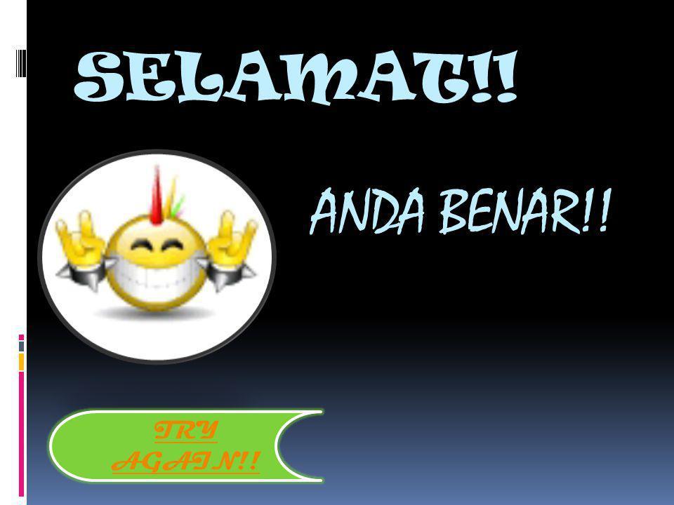 SELAMAT!! ANDA BENAR!! TRY AGAIN!!