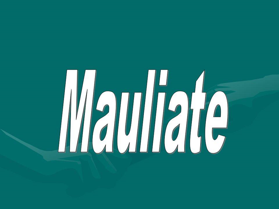 Mauliate