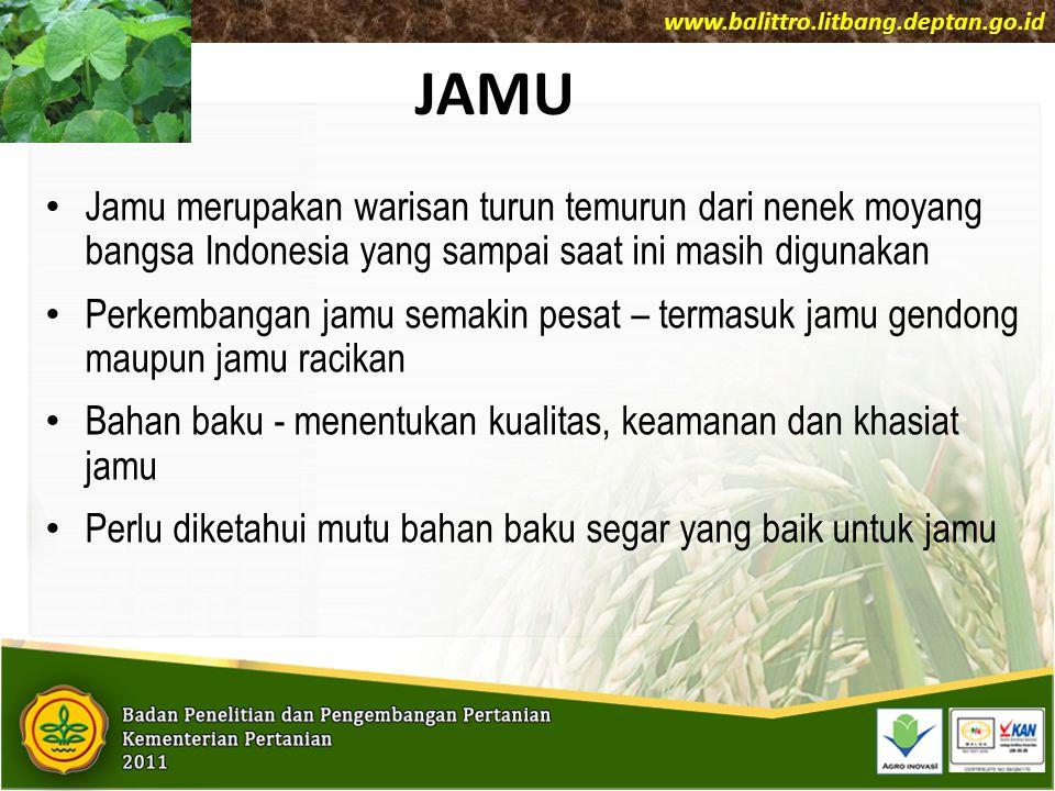 www.balittro.litbang.deptan.go.id JAMU.