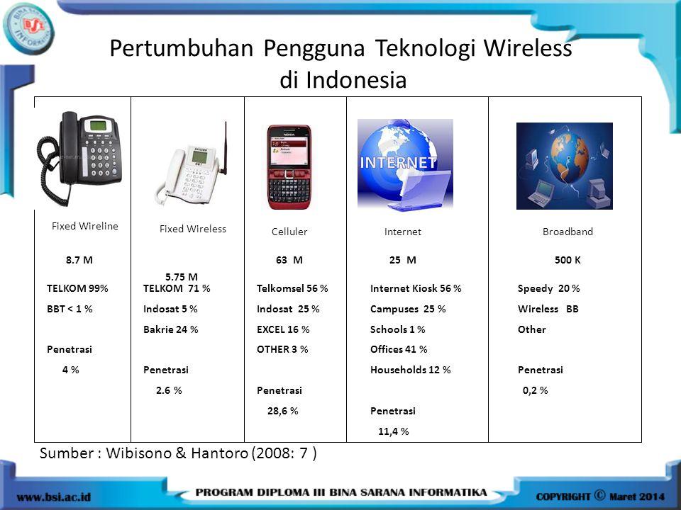 Pertumbuhan Pengguna Teknologi Wireless di Indonesia