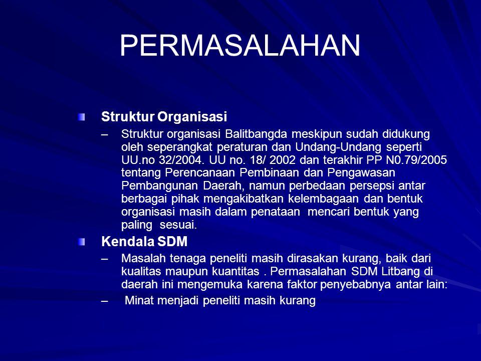 PERMASALAHAN Struktur Organisasi Kendala SDM