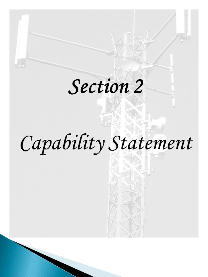 Section 2 Capability Statement