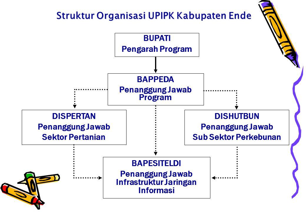 Struktur Organisasi UPIPK Kabupaten Ende