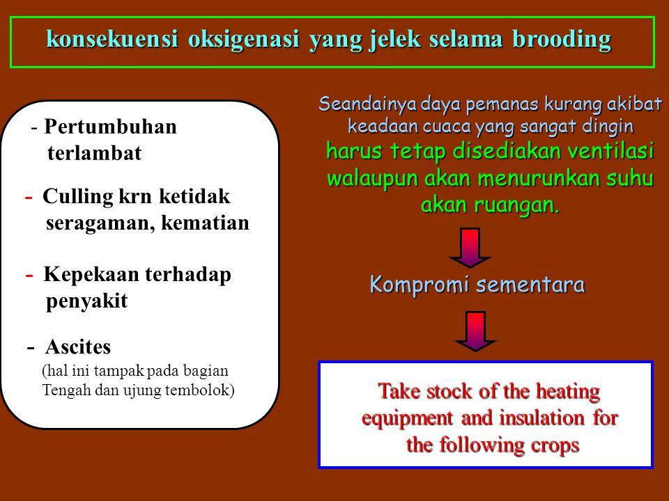 konsekuensi oksigenasi yang jelek selama brooding