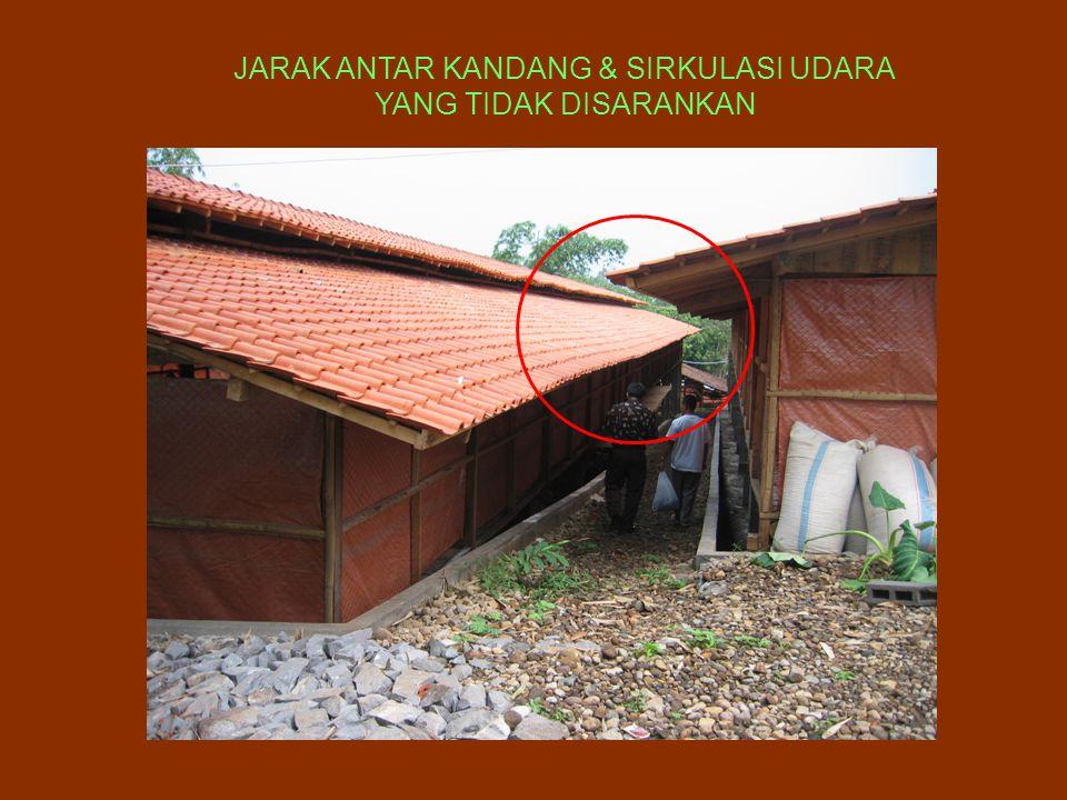 JARAK ANTAR KANDANG & SIRKULASI UDARA
