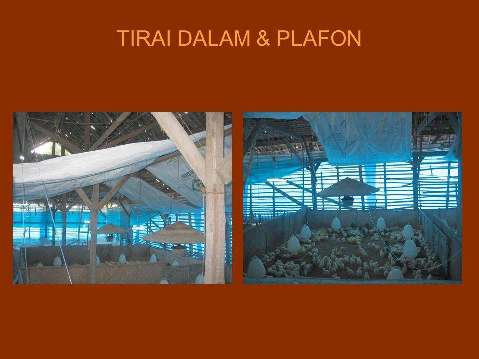 TIRAI DALAM & PLAFON