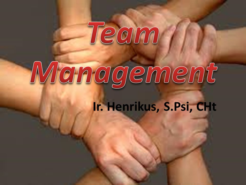 Team Management Ir. Henrikus, S.Psi, CHt