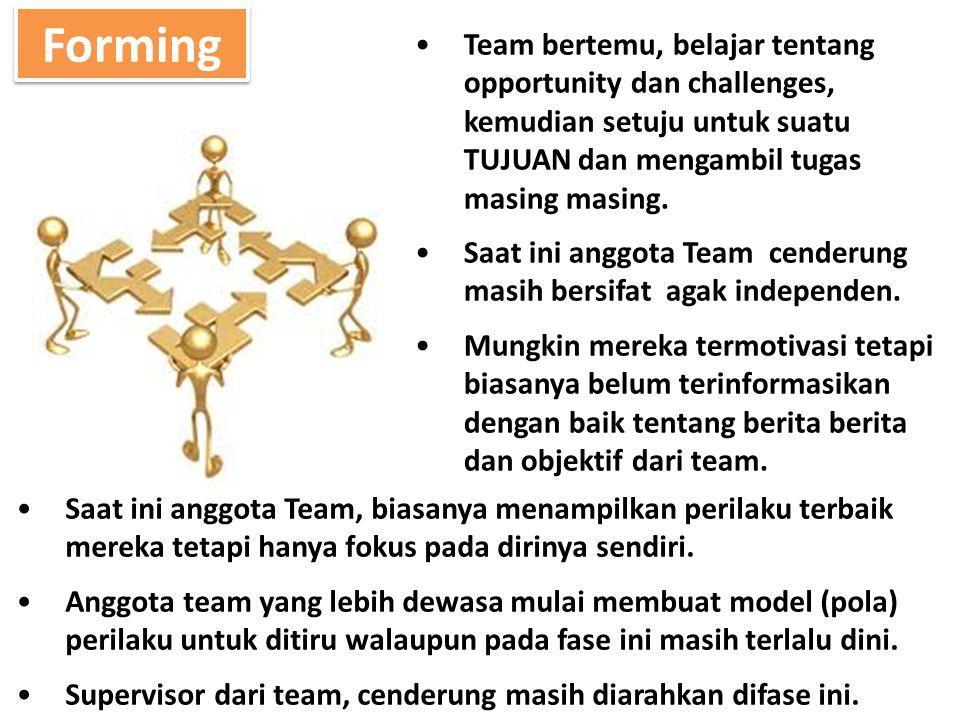 Forming Team bertemu, belajar tentang opportunity dan challenges, kemudian setuju untuk suatu TUJUAN dan mengambil tugas masing masing.