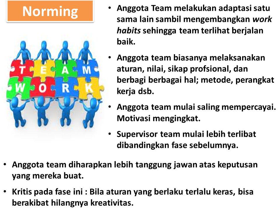 Norming Anggota Team melakukan adaptasi satu sama lain sambil mengembangkan work habits sehingga team terlihat berjalan baik.