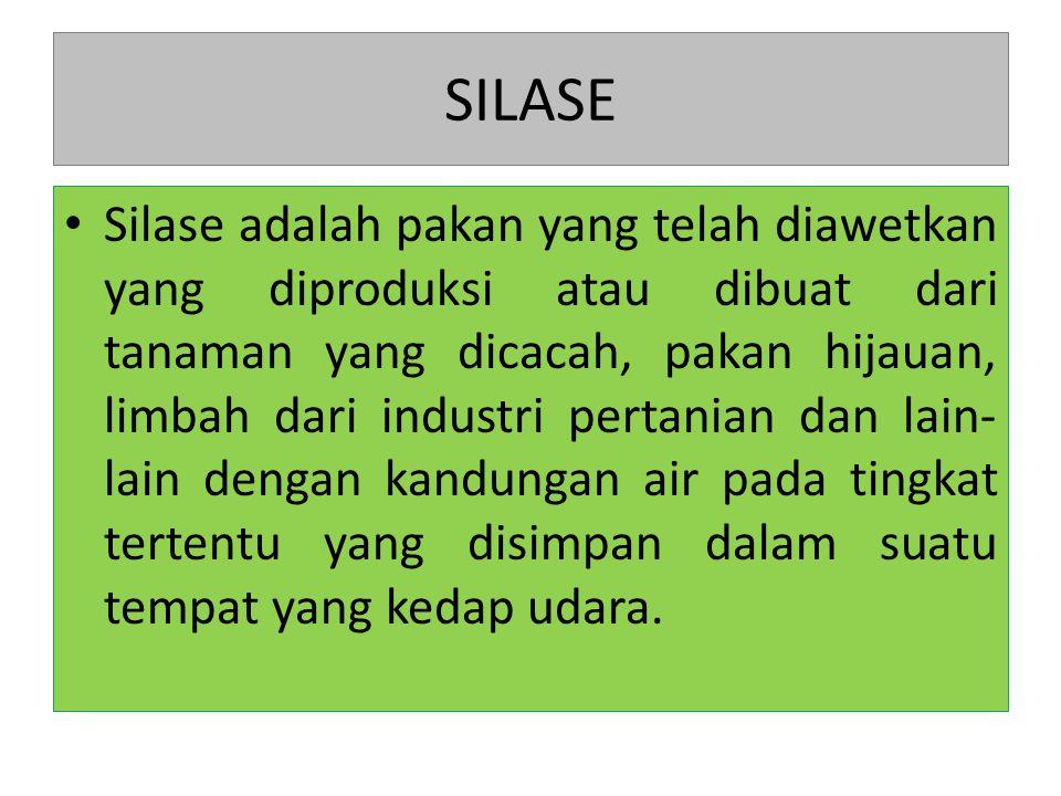 SILASE