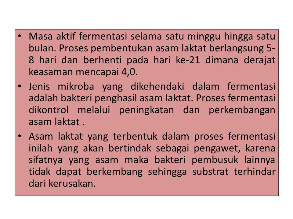 Masa aktif fermentasi selama satu minggu hingga satu bulan