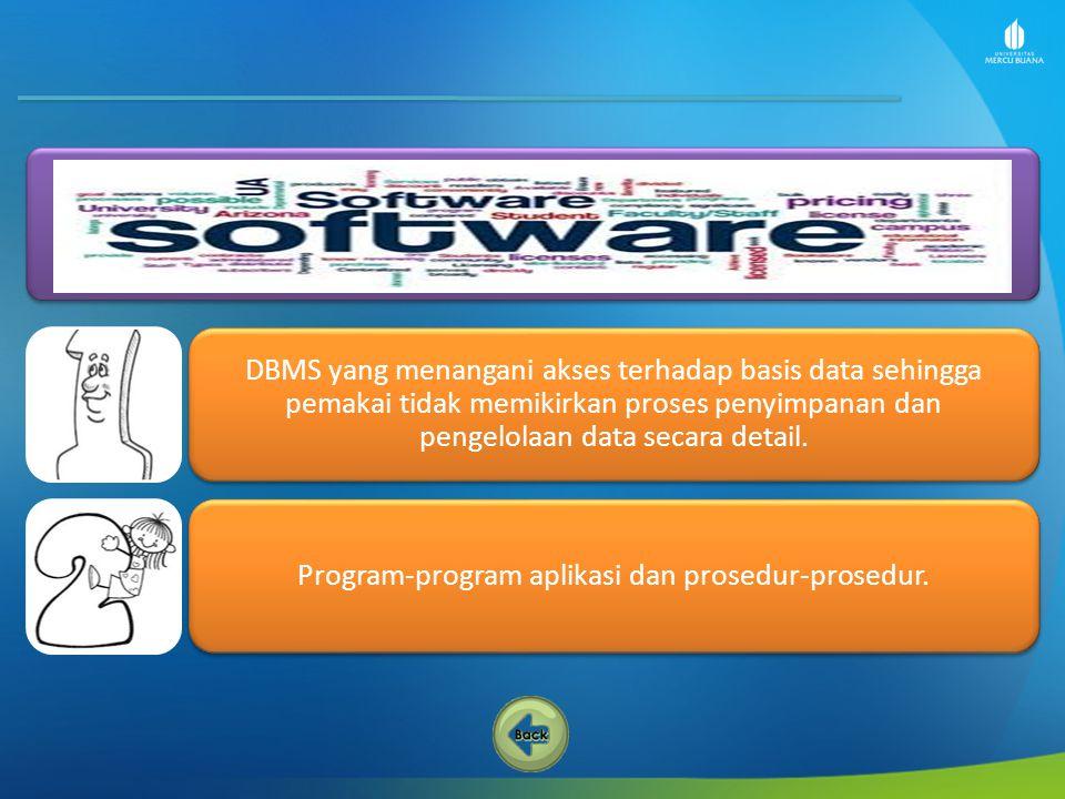 Program-program aplikasi dan prosedur-prosedur.