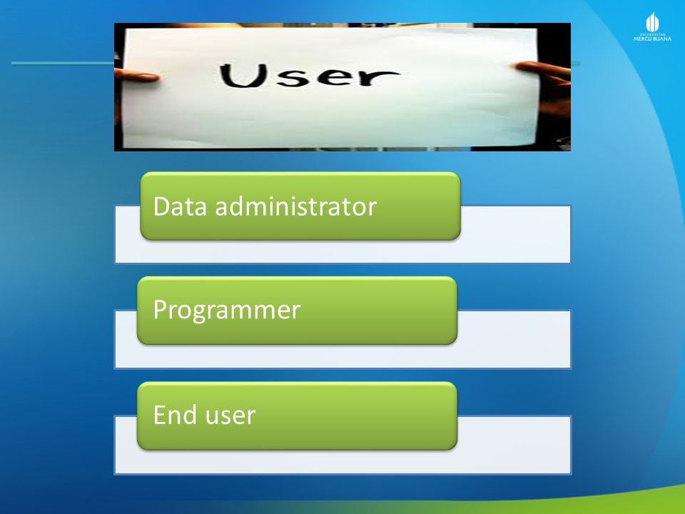 Data administrator Programmer End user