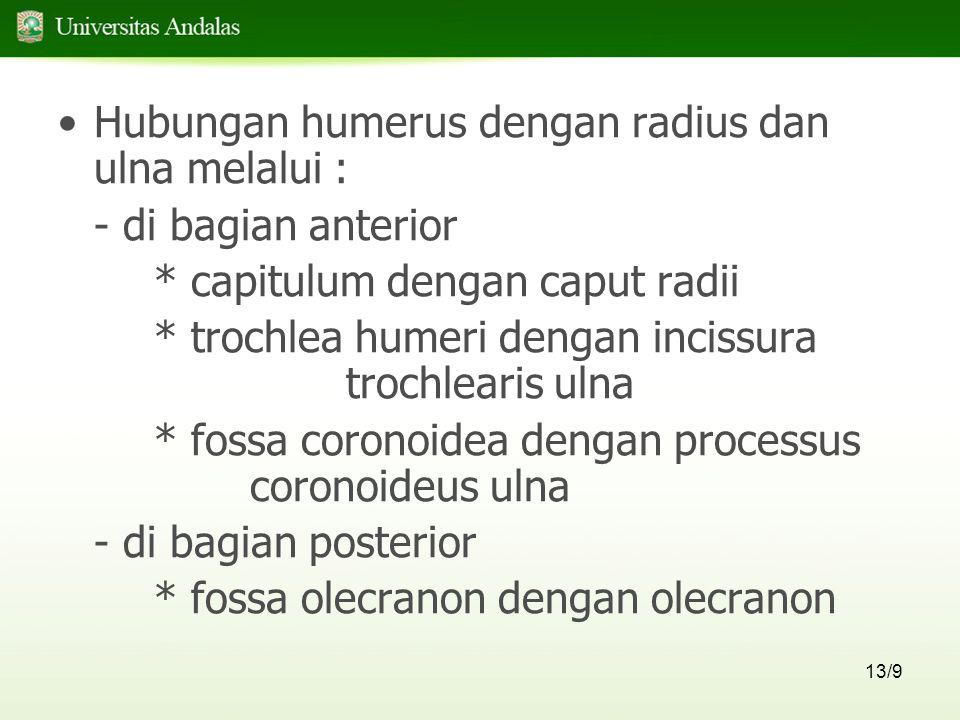 Hubungan humerus dengan radius dan ulna melalui :