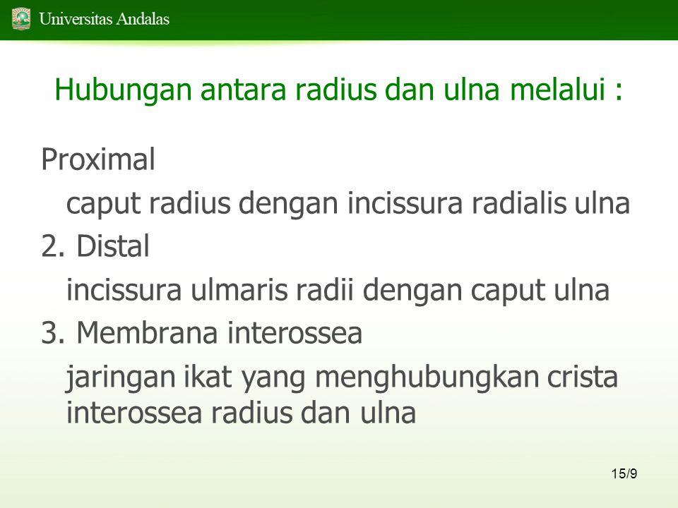 Hubungan antara radius dan ulna melalui :