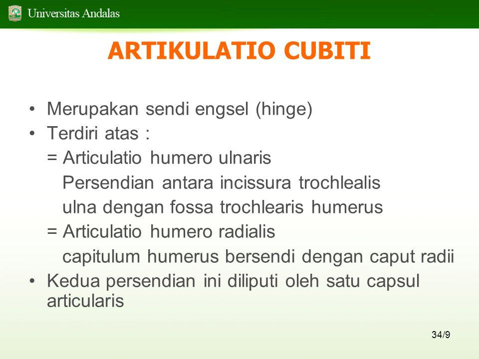 ARTIKULATIO CUBITI Merupakan sendi engsel (hinge) Terdiri atas :