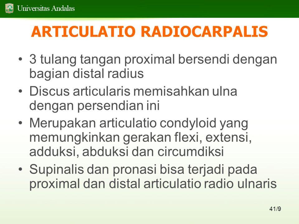 ARTICULATIO RADIOCARPALIS