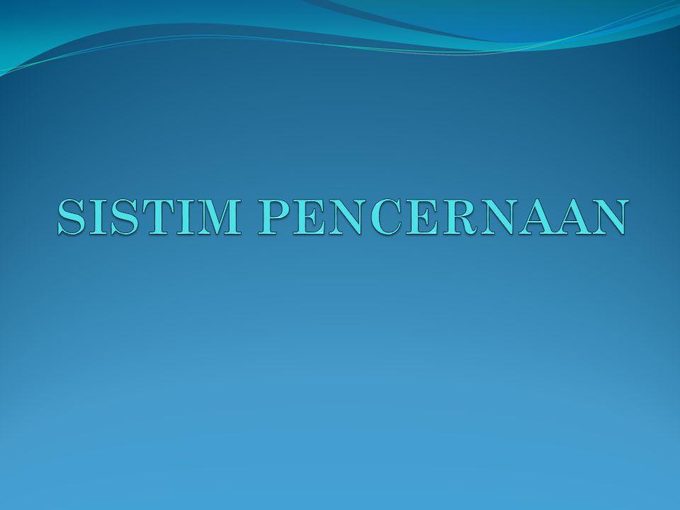 SISTIM PENCERNAAN