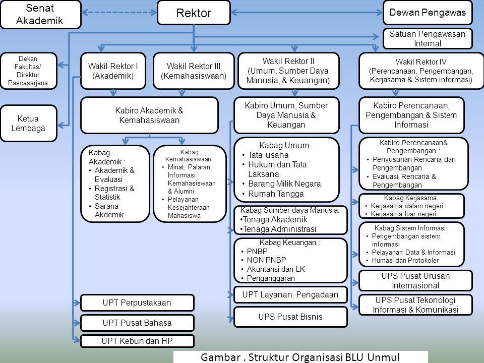 Gambar . Struktur Organisasi BLU Unmul