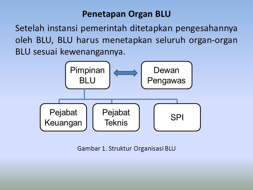 Gambar 1. Struktur Organisasi BLU