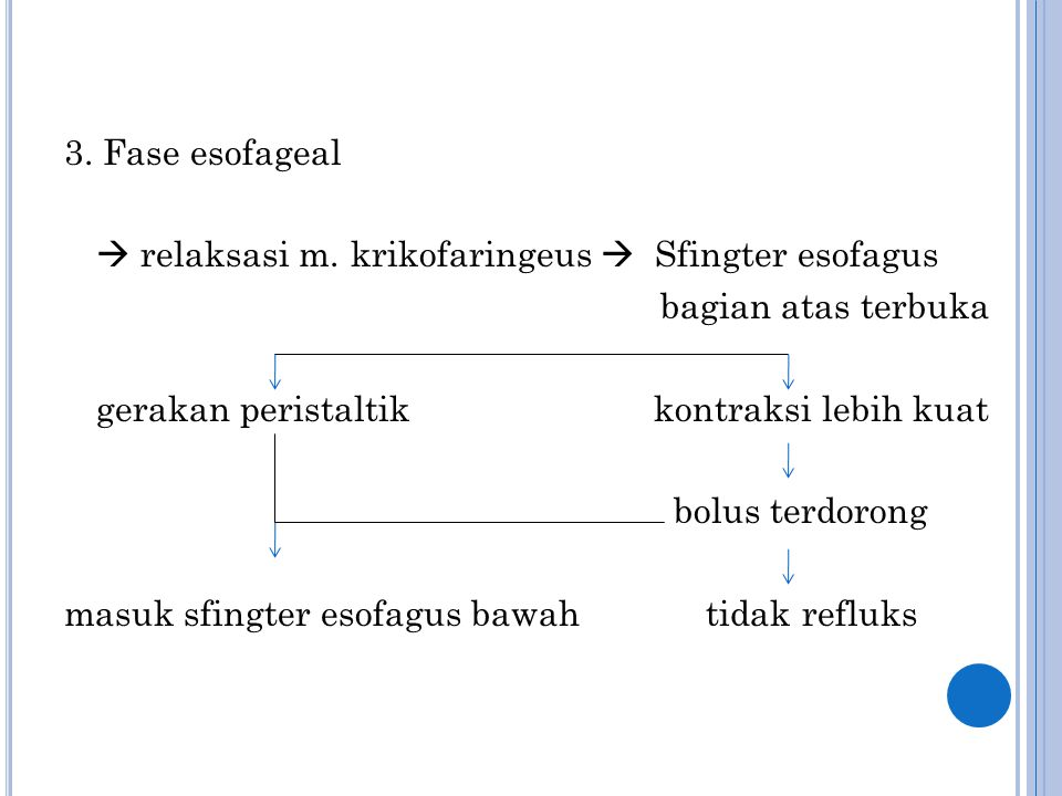 3. Fase esofageal  relaksasi m. krikofaringeus  Sfingter esofagus. bagian atas terbuka. gerakan peristaltik kontraksi lebih kuat.