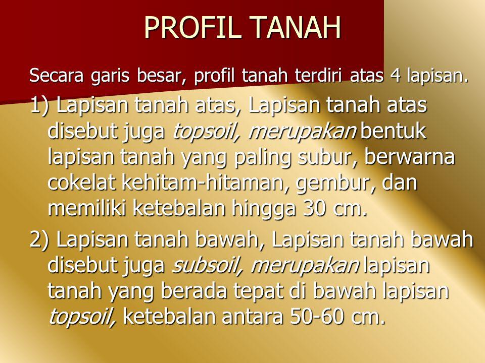 PROFIL TANAH Secara garis besar, profil tanah terdiri atas 4 lapisan.