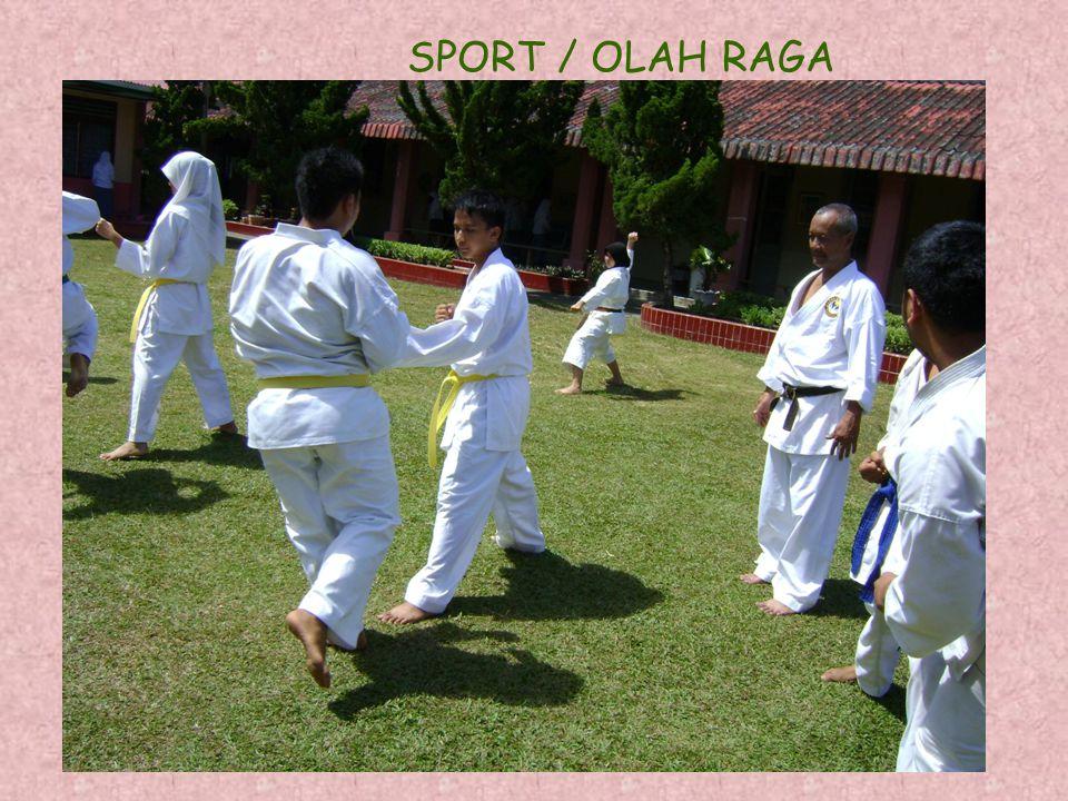 SPORT / OLAH RAGA