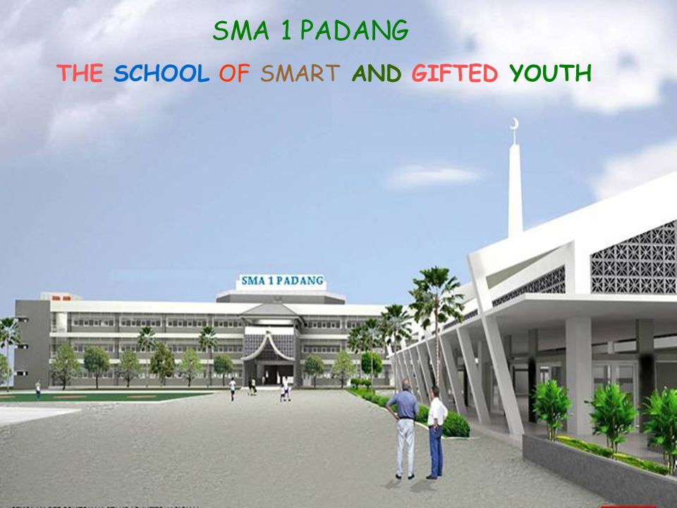 THE SCHOOL OF SMART AND GIFTED YOUTH