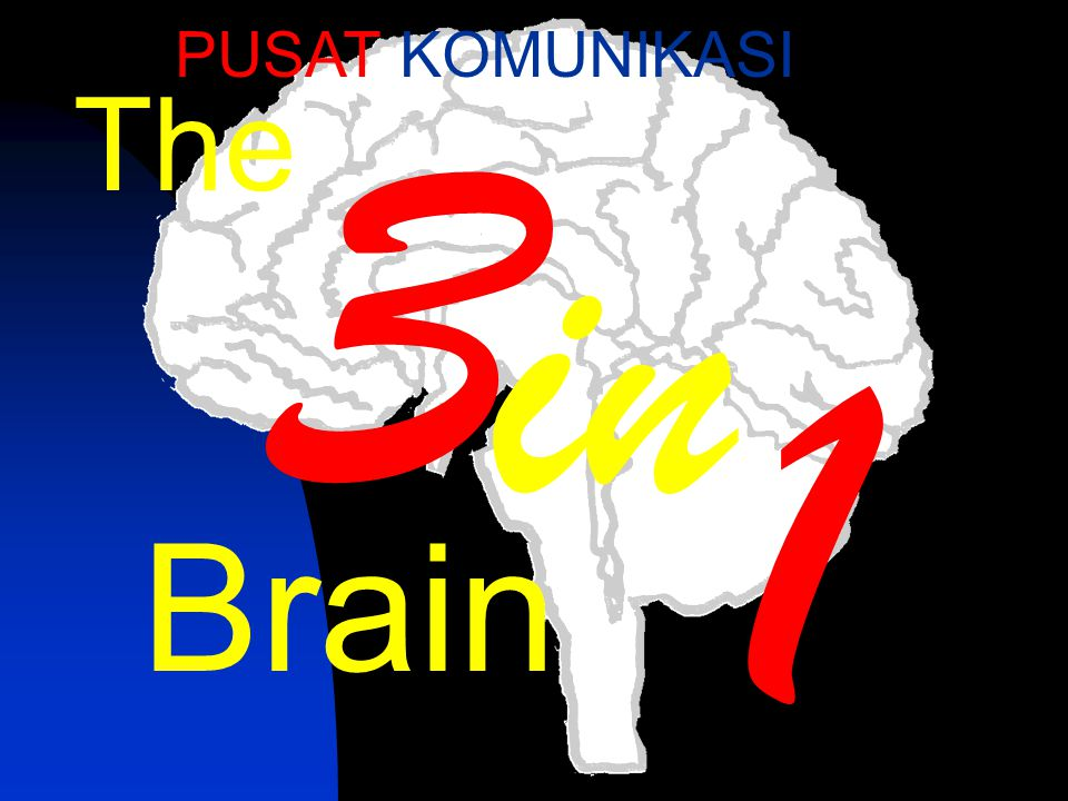 PUSAT KOMUNIKASI 3 The in 1 Brain