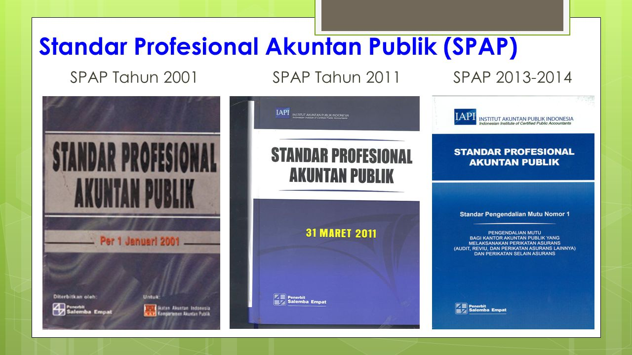 Standar Profesional Akuntan Publik (SPAP)