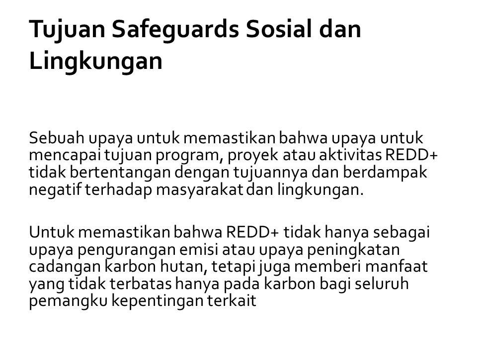 Tujuan Safeguards Sosial dan Lingkungan