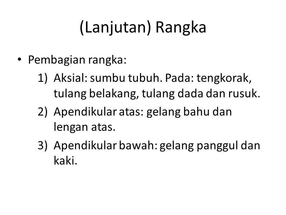 (Lanjutan) Rangka Pembagian rangka: